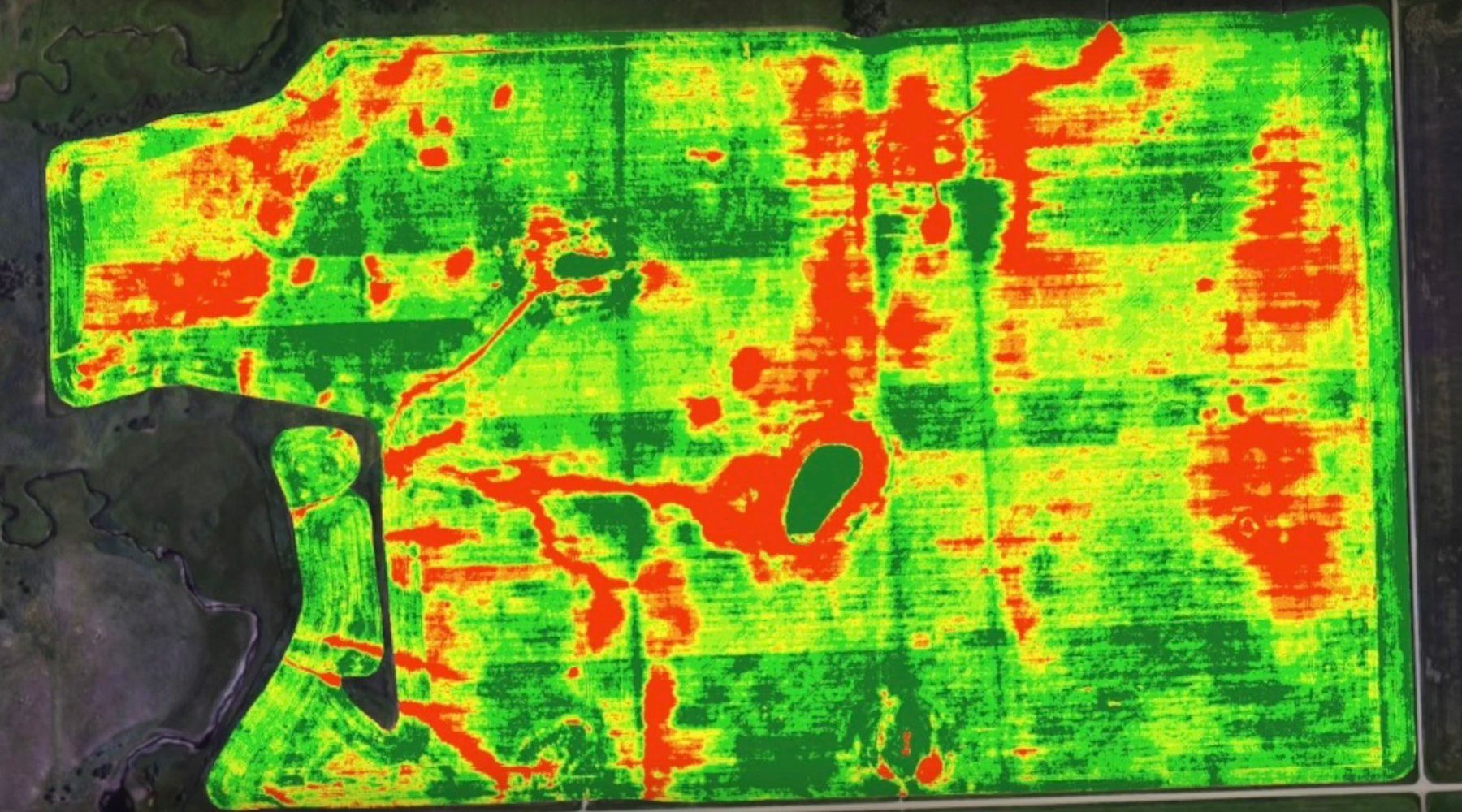 Therman imaging of a farmland field, complied over several drone flights