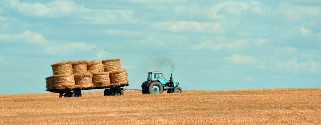 Is the Future of Agriculture Regenerative?