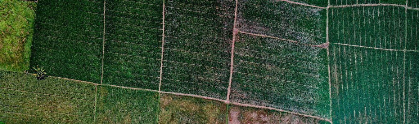 A Quick Comparison: Farmland vs. Real Estate Investing