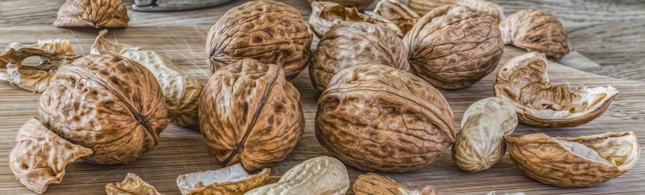 A Brief History of Walnuts