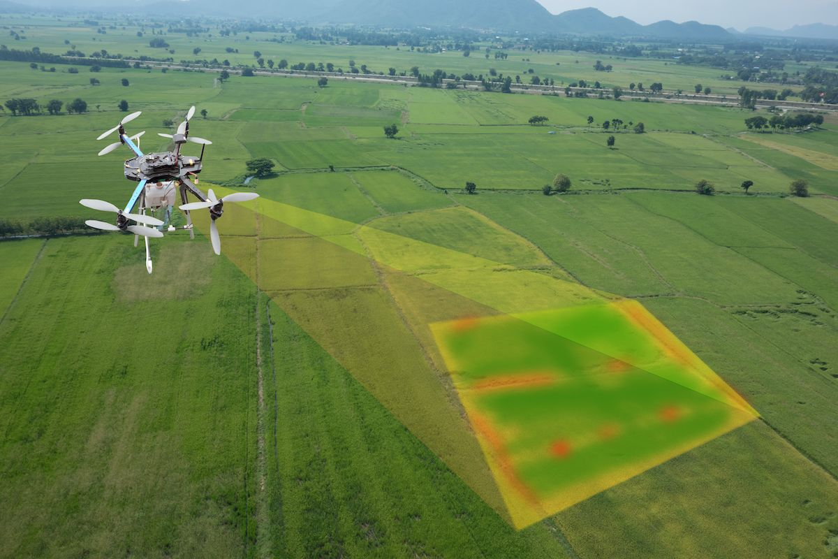 Recent developments in drone technology enable farmers to use sensor technology for crop monitoring, threat detection and yield forecasting