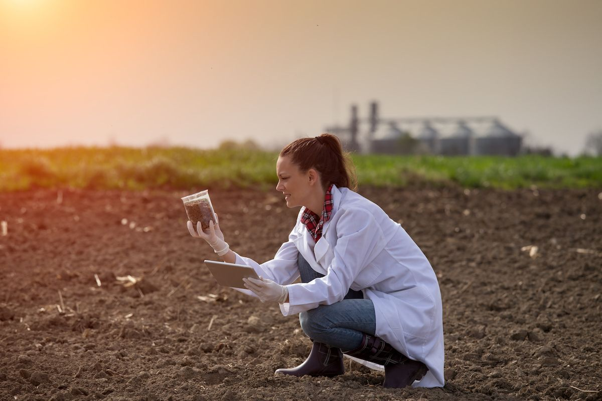 New studies in agricultural genomics bring new insights to farmers on soil health management.